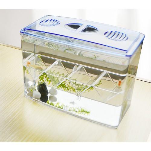 Hatch box suspend aquarium arcylic guppy baby small fish separation breeding box no gap