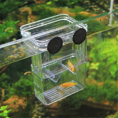 Size High Clear Fish Breeding Box Aquarium Breeder Box Double Guppies Hatching Incubator Isolation