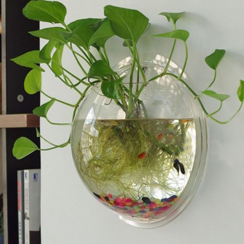 Wall Mount Hanging Transparent Bubble Aquarium Bowl with Screws Fish Tank Aquarium Pot Bowl Home Cafe