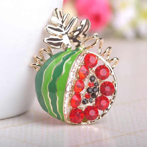 New Style Brooch Clip (6)