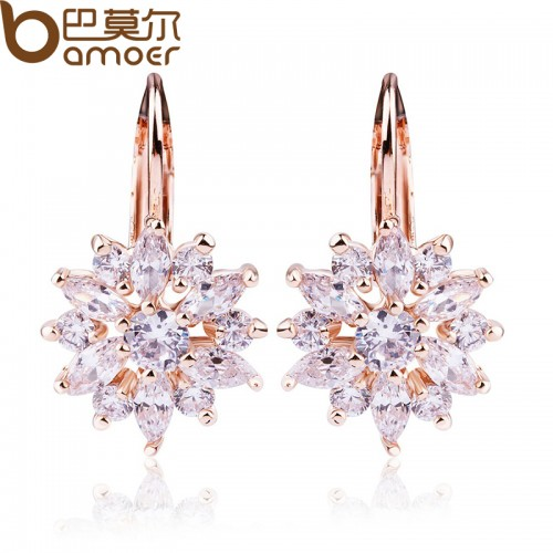 Women Fashion Earrings (1)