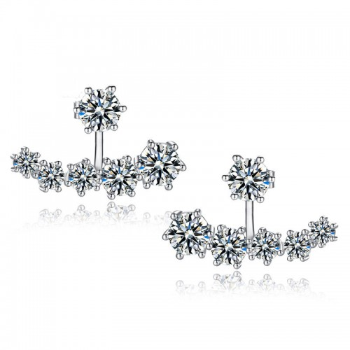 Women Stylish Earrings (13)